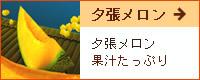 北海道産地直送お取り寄せ新鮮夕張メロンお中元お歳暮